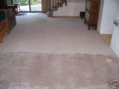 Ted's Carpet Cleaning in Los Angeles